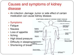10-diets-to-b-avoided-n-consumed-by-kidney-patients-4-638